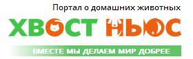 hvost.news logo