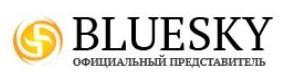blueskynail logo