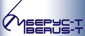 iberus-t logo